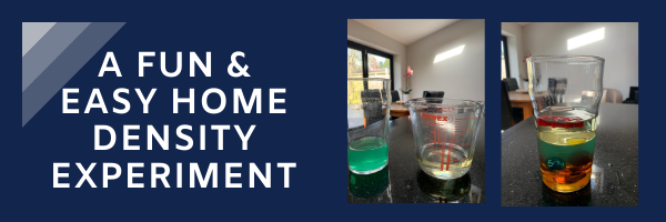 fun home science experiment for kids